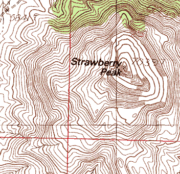 Topographic Maps - Topographical map of new mexico