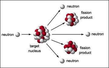 medical physics by cameron pdf